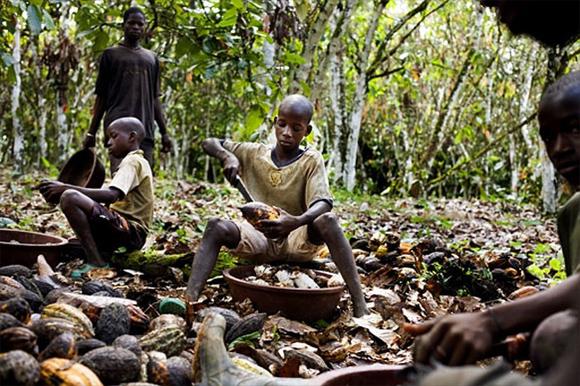 cacao-africa-ninos